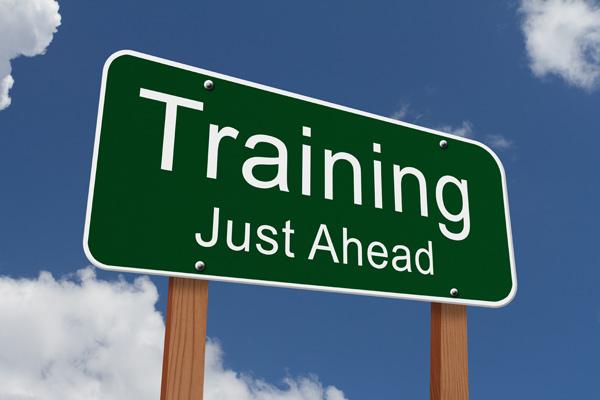 Forex for profits mentoring program