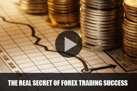 Learn forex currency trading online
